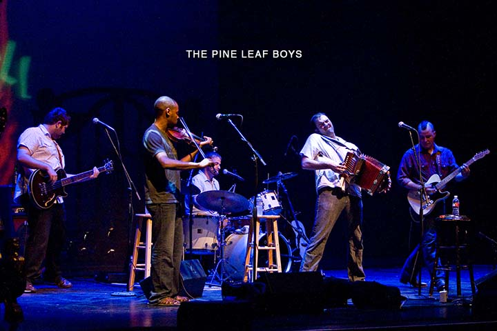 Gusty, firey winds blow in from the Bayou : Latest installment of Sings Like Hell brings Cajun hellions, Pine Leaf Boys